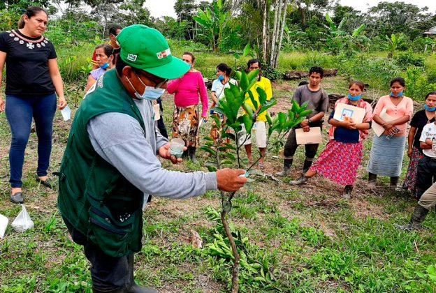 LEY DE PROMOCIÓN Y EXTENSIÓN AGROPECUARIA INCREMENTARÁ PRODUCTIVIDAD Y COMPETITIVIDAD DE LA AGRICULTURA FAMILIAR